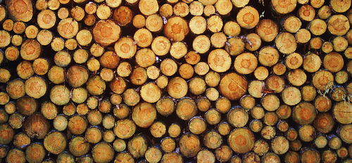 Log Pile by Lars Hammer on Flickr http://flic.kr/p/a4XR3b